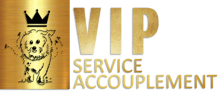 logo-vip-service-accouplement
